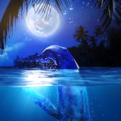 Whale MoonWave