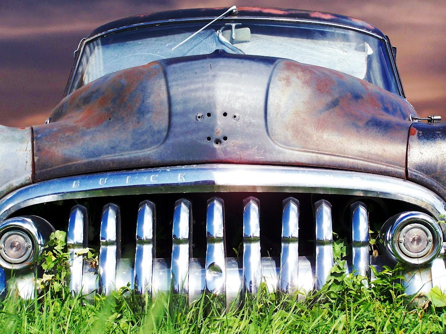 Grazing  by Joerg Schlagheck - Transportation Automobiles ( solid, old, grass, stylish, buick, decay., rusty, parked, grounded, rotting,  )