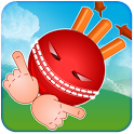 Crazy Cricket icon
