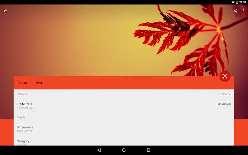 Wally - screenshot thumbnail