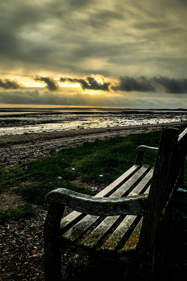 Seat with a view by Nicole Williams - Novices Only Landscapes ( bench coast sunset lindisfarne )