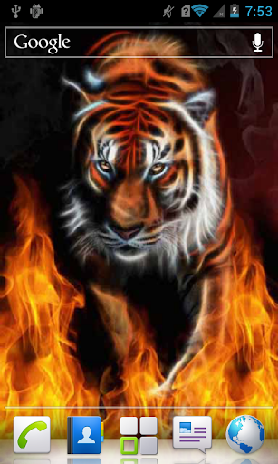 Scintillating Tiger on Fire WP