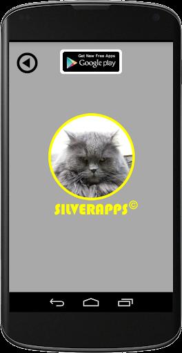 【免費工具App】无线网络信息-APP點子