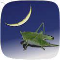 Carolina Crickets icon