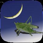 Carolina Crickets icon