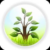 BG Landscape & Florist Pte Ltd