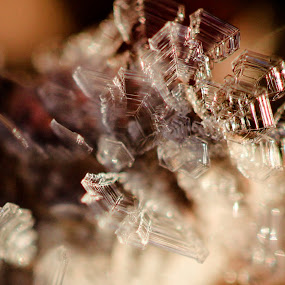 Ice Chrystal by Elisabeth Sjåvik Monsen - Nature Up Close Other Natural Objects ( northern, winter, cold, snow, frost, norway,  )