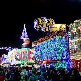 Christmas at Disney by Jen Cornell - Public Holidays Christmas
