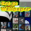Internet Photos Wallpapers icon