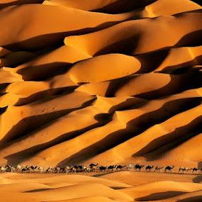 Back by Adeeb Alani - Landscapes Deserts
