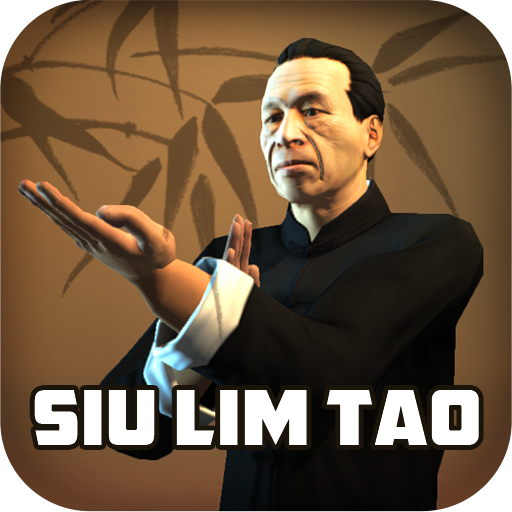 wing chun kung fu slt бесплатно
