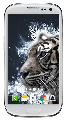 玩免費生活APP|下載タイガーは、壁紙を生きる app不用錢|硬是要APP