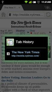 Dolphin Tab History - screenshot thumbnail