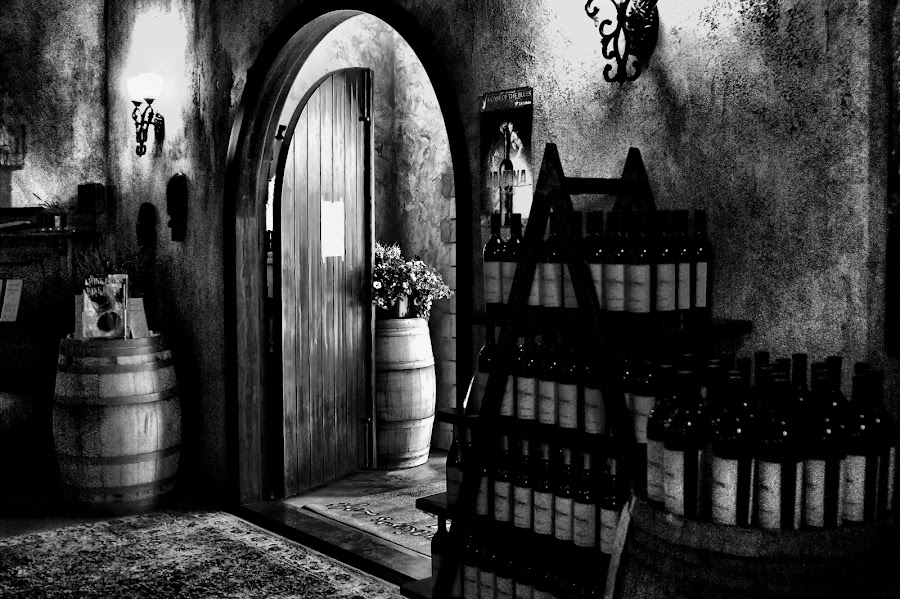 Winery door by Gaylord Mink - Buildings & Architecture Other Interior ( barrels, inside, door, bottles, winery,  )