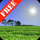 Cornfield Free icon