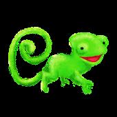 Chacha-Casha, le caméléon