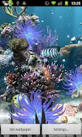 Screenshot of Coral Reef Live WP