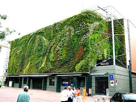 Fachada vegetal sistemas constructivos urbanarbolismo for Definicion exterior