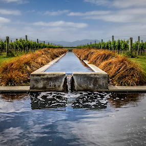 Flowing by Barb Hauxwell - Landscapes Waterscapes ( clouds, water, mountains, fountain, villa maria winery, grapevines, new zealand )