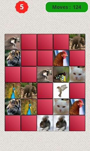 Memory Game - Animals