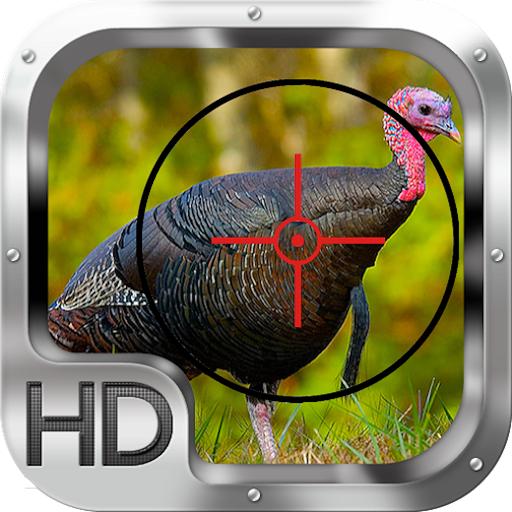 Wild Turkey Hunting Gold Pro LOGO-APP點子