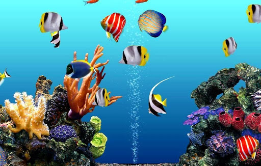 Aquarium Wallpapers HD