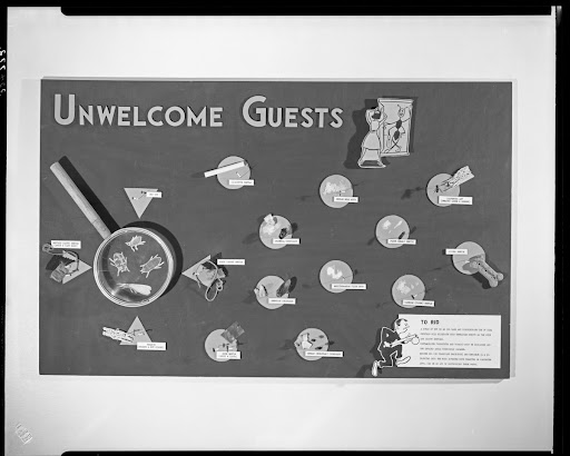 Unwelcome Guests exhibit, Natural Science Center, 1956