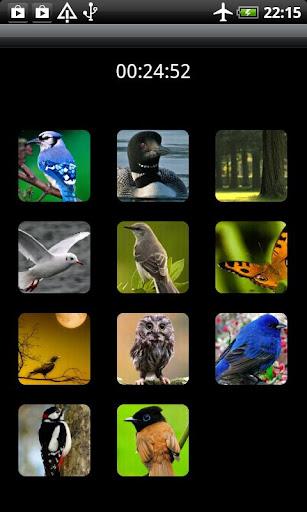 鳥類鈴聲的聲音