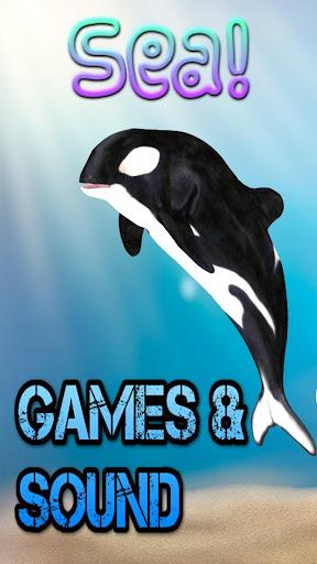 Sea Life Games Fun Facts