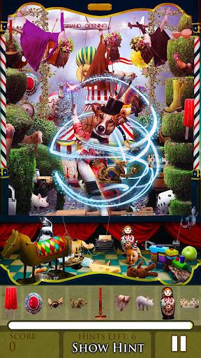 Hidden Object - The Carnival