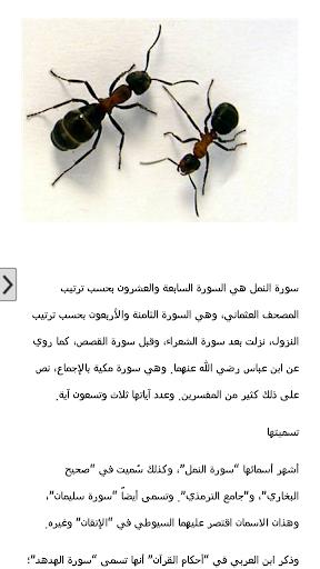 في واحــة القرآن ..