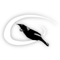 HaloBirds icon