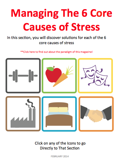 Real Stress Solutions - screenshot