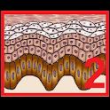 Test de Dermatología 2 icon