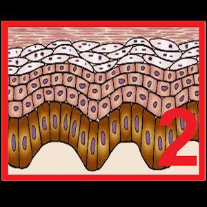 Test de Dermatología 2 APK