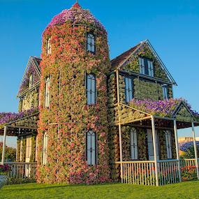 Miracle Garden by Jigs Crisostomo - City,  Street & Park  City Parks ( #art, #house, #flower )