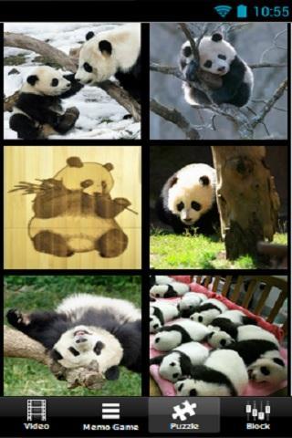 【免費解謎App】panda love jam-APP點子