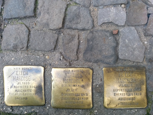 Stumbling stones for the Marcuse family