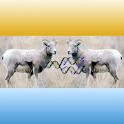 Cloning logo