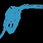 Spritpreis-toBeDeleted icon