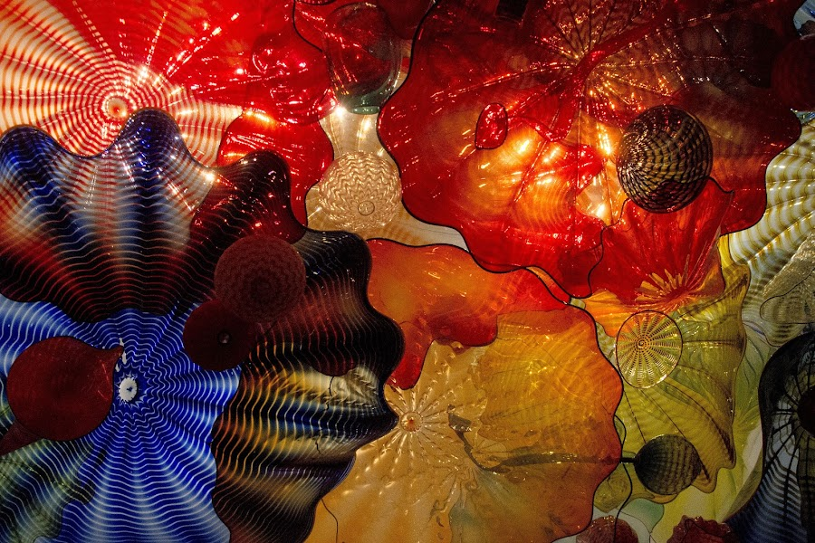 Micrososom by Gene Myers - Abstract Patterns ( shotsbygene, abstract, moods, colorful, art, show, happiness, vibrant, gene myers, inspiration, chihuly, color, january, emotions, glass, mood factory,  )