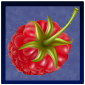 Справочник ягод