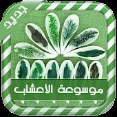 الدليل الشامل للعلاج بالأعشاب
