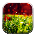 Galaxy S5 Rain n Grass HD icon