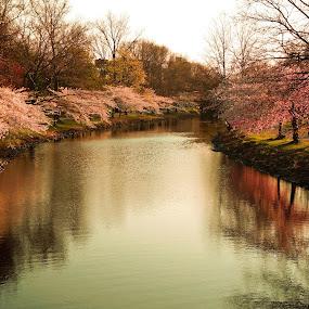 Spring by Plamen Valkovski - Landscapes Waterscapes