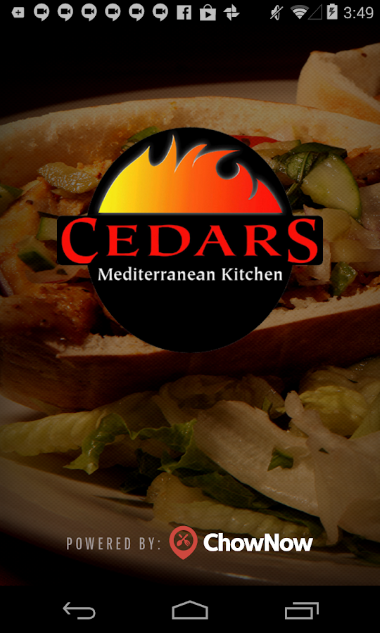 Cedars Mediterranean Kitchen- screenshot