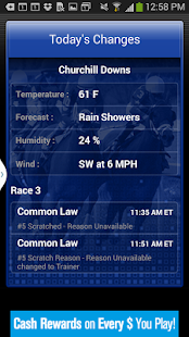 Horse Races Now - screenshot thumbnail