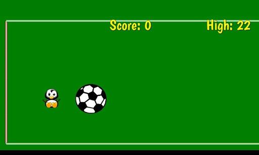 Bird Goalie