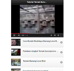 Tutorial Ternak Lovebird screenshot 3