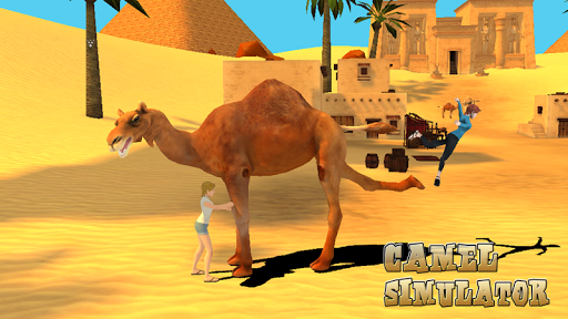 Camel Simulator